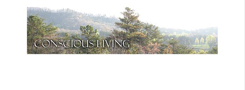 Conscious-Living-Blog-ConsciousLiving-www.AnneMerkel.com1_